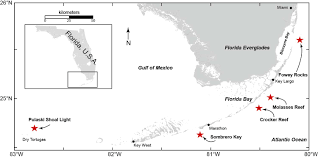 Map Of The Florida Keys Measuring Coral Growth To Help Restore Reefs Coral Reef