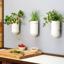 planter design creative indoor wall planters placement decor orchidlagoon com
