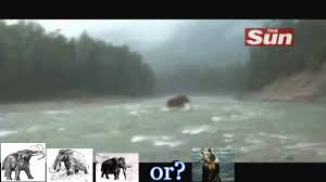 woolly mammoth alive crossing river siberia