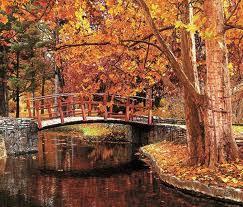 imagenes de otoño para fondo de escritorio paisaje de otoño para aprovechar como portada de facebook