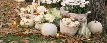 white pumpkins fall decor ways to decorate with pumpkins