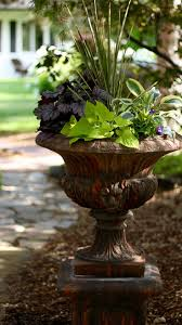 Garden Containers For Sale 30 Best Plants For Entryways Images On Pinterest Entryway