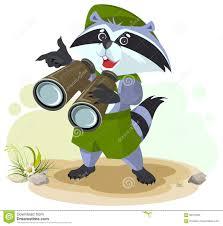 safari binoculars clipart scout raccoon with binoculars stock vector image 69721085