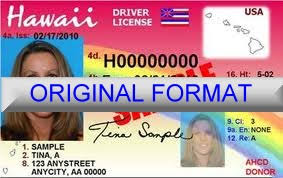 fake id novelty id fake driver license hawaii novelty id card