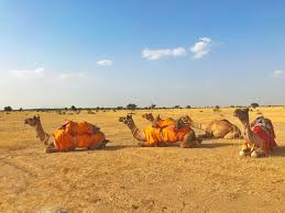 thar desert location sleeping with the stars a secret jaisalmer desert safari