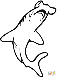 coloring pages hammerhead sharks