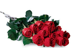 Dozen Of Roses Vissers Florist In Orange County Since 1956 Orange County And