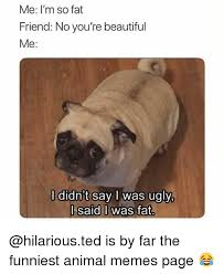 Funniest Animal Memes - me i m so fat friend no you re beautiful me l didn t say i was ugly
