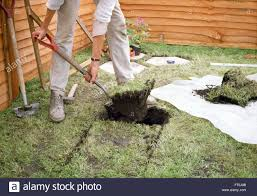 Laying Patio Slabs On Grass Gardener Digging Out Lawn For Laying Paving Slabs For Editorial