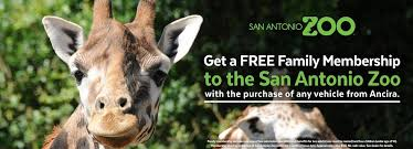san antonio zoo lights coupon service coupons monthly specials from ancira nissan