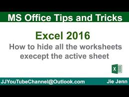 how to hide all the worksheets except the active sheet excel vba