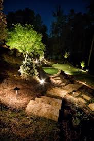 backyard putting green lighting 7 best putting greens images on pinterest homemade ice green and