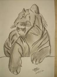 tiger charcoal pencil