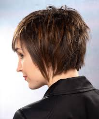 short hairstylescuts for fine hair with back and front view short hairstyle straight formal thehairstyler com hair