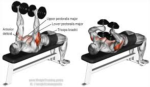 tate press a compound push exercise main muscles worked triceps