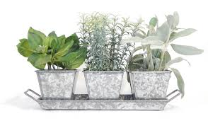 indoor herb garden kits to grow herbs indoors hgtv galvanized herb kit rustic windowsill kit urban farmer