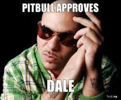 Pitbull Meme Dale - pitbull dale memes memes pics 2018