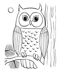 coloring pages owls kids coloring