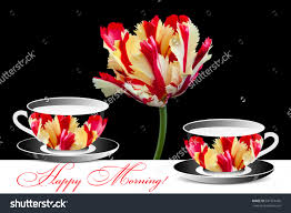 Beautiful Coffee Cups Beautiful Flame Parrot Tulip Tea Cups Stock Photo 331574405