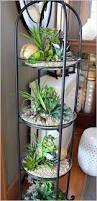 Beautiful Indoor Plants 24 Of The Most Beautiful Ideas On Indoor Mini Garden To Collect