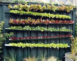 How To Make An Urban Garden - 25 best vertical and urban gardening images on pinterest plants