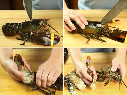 the food lab how to kill cook and shell a lobster serious eats