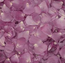 Real Rose Petals Bulk Freeze Dried Lavender Rose Petals For Wedding