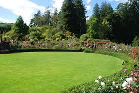 Rose Garden Layout by Landscape Layout Dirt Simple Curved Garden Beds Loversiq