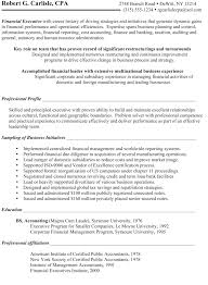 Finance Manager Sample Resume by Sample Résumé Chief Financial Officer Before Certified Resume