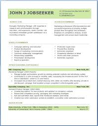 sample professional resume format for experienced it security