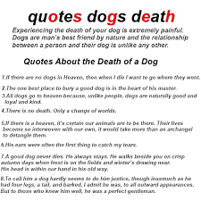 grieving loss of pet 1betterof quotes dogs about grieving and loss dog quotations