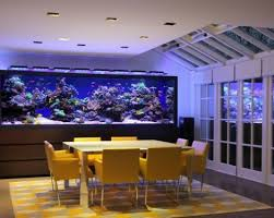 wohnideen minimalistischen aquarium wohnideen minimalistischen aquarium 60 images das heimische
