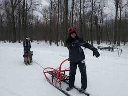 listen as we ride along with this dog sled team michigan radio