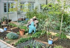 kitchen gardens design vegetable garden designs and ideas all for the house efficient