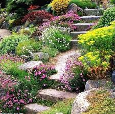 Backyard Gardening Ideas by 780 Best Landscaping A Slope Images On Pinterest Landscaping