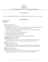 Best Resume Profile Summary by Resume Writing Services For Accounting