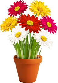 Clipart Vase Of Flowers Vase Clipart Vector Flower Pencil And In Color Vase Clipart