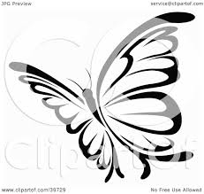 pretty butterfly clipart black and white clipground