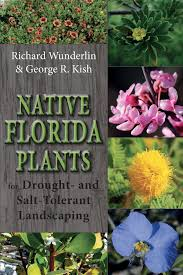 florida native plants pictures native florida plants for drought and salt tolerant landscaping