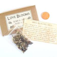 seed favors flower seed packets for wedding favors sle wedding favor seeds