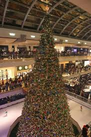 the galleria lights 55 foot tree during annual