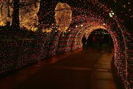 dancing lights in nashville middle tennessee lights up parks realty parks homes