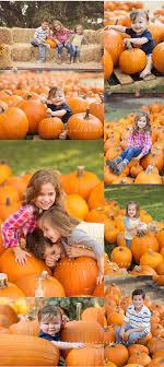 pumpkin patch maternity san antonio child photographer pumpkin patch mini session san