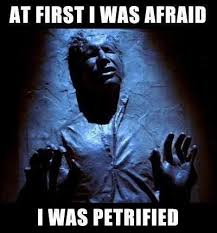 Funny Star Wars Memes - first i was afraid funny star wars meme