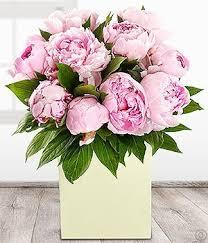 peonies flower delivery flowers dublin flowers ireland florists dublin flower delivery