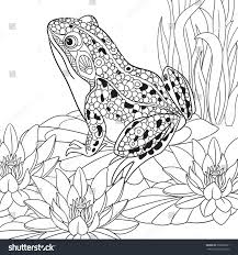 zentangle stylized cartoon frog sitting among stock vector