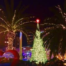 christmas lights san francisco best christmas activities in san francisco free tours by foot