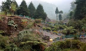 Rock Garden Darjeeling by Mystic Darjeeling Gallery U2013 Avisekphotography Com