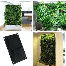wall mounted planters buy mkono 2 pcs wall mounted glass vase