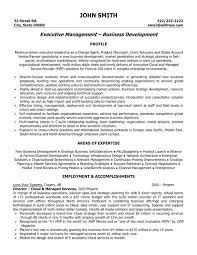 information technology resume template 2 director resume exles it sle technology manager resume
